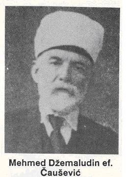 Mehmed Dzemaludin Causevic